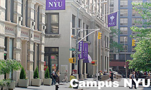 Campus NYU